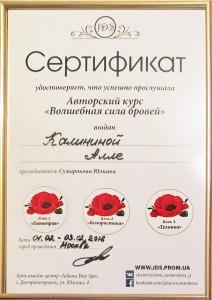 Сертификат JDS - Брови - фото
